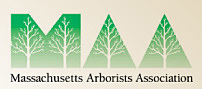 Membership logo for Massachusetts Arborists Association